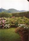 Villa Bifamiliare in vendita a Teolo, 4 locali, zona Zona: Bresseo, prezzo € 270.000 | CambioCasa.it