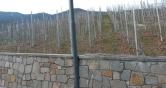 Terreno Edificabile Residenziale in vendita a Cloz, 9999 locali, zona Località: Cloz - Centro, Trattative riservate | CambioCasa.it