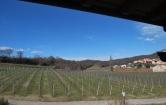 Villa in vendita a Alonte, 5 locali, Trattative riservate | Cambio Casa.it