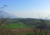 Terreno Edificabile Residenziale in vendita a Muscoline, 9999 locali, prezzo € 25.000 | CambioCasa.it
