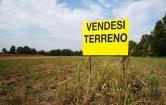 Terreno Edificabile Residenziale in vendita a Castelguglielmo, 9999 locali, zona Località: Castelguglielmo - Centro, prezzo € 60.000 | Cambio Casa.it