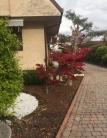 Villa in vendita a Borgoricco, 8 locali, zona Zona: San Michele delle Badesse, prezzo € 270.000 | CambioCasa.it