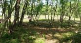 Terreno Edificabile Residenziale in vendita a Villaga, 9999 locali, zona Zona: Pozzolo, Trattative riservate | CambioCasa.it