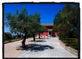 Villa in vendita a Eboli, 5 locali, zona Località: Eboli, prezzo € 270.000 | CambioCasa.it