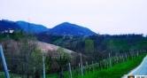 Terreno Edificabile Residenziale in vendita a Monfumo, 9999 locali, zona Località: Monfumo, prezzo € 45.000 | Cambio Casa.it