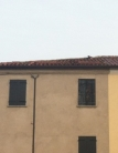 Villa in vendita a Pernumia, 6 locali, zona Località: Pernumia, prezzo € 60.000 | CambioCasa.it