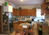 Appartamento in affitto a Megliadino San Vitale, 3 locali, prezzo € 380 | CambioCasa.it