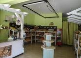 Immobile Commerciale in vendita a Campodarsego, 9999 locali, zona Zona: Sant'Andrea, prezzo € 20.000 | CambioCasa.it