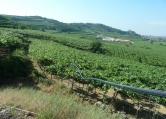 Terreno Edificabile Residenziale in vendita a Soave, 9999 locali, prezzo € 145.000 | CambioCasa.it