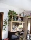 Appartamento in vendita a Selvazzano Dentro, 3 locali, zona Zona: Selvazzano, prezzo € 128.000 | CambioCasa.it