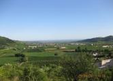 Terreno Edificabile Residenziale in vendita a Tregnago, 9999 locali, zona Località: Tregnago, prezzo € 340.000 | CambioCasa.it