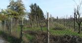 Terreno Edificabile Residenziale in vendita a Abano Terme, 9999 locali, prezzo € 600.000   CambioCasa.it