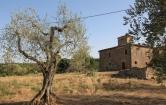 Rustico / Casale in vendita a Sinalunga, 11 locali, zona Zona: Farnetella, prezzo € 395.000 | CambioCasa.it