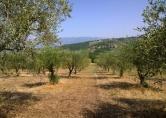 Terreno Edificabile Residenziale in vendita a Postiglione, 9999 locali, zona Località: Postiglione, prezzo € 28.000 | CambioCasa.it