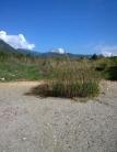 Terreno Edificabile Residenziale in vendita a Campagna, 9999 locali, prezzo € 35.000 | CambioCasa.it