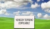 Terreno Edificabile Residenziale in vendita a Cartura, 9999 locali, zona Località: Cartura, prezzo € 60.000 | CambioCasa.it
