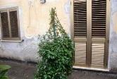 Appartamento in vendita a Cassino, 9999 locali, prezzo € 85.000 | Cambiocasa.it