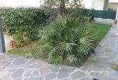 Appartamento in vendita a Cattolica, 3 locali, prezzo € 178.000 | Cambiocasa.it