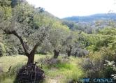 Terreno Edificabile Residenziale in vendita a Montefiore Conca, 9999 locali, prezzo € 15.000 | Cambio Casa.it
