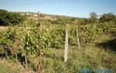 Terreno Edificabile Residenziale in vendita a Saludecio, 9999 locali, prezzo € 38.000 | Cambio Casa.it