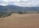 Terreno Edificabile Residenziale in vendita a Torrita Tiberina, 9999 locali, prezzo € 490.000 | CambioCasa.it