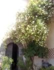 Villa a Schiera in vendita a Licciana Nardi, 18 locali, prezzo € 750.000 | Cambio Casa.it