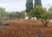 Terreno Edificabile Residenziale in vendita a Capurso, 9999 locali, prezzo € 6.000 | CambioCasa.it